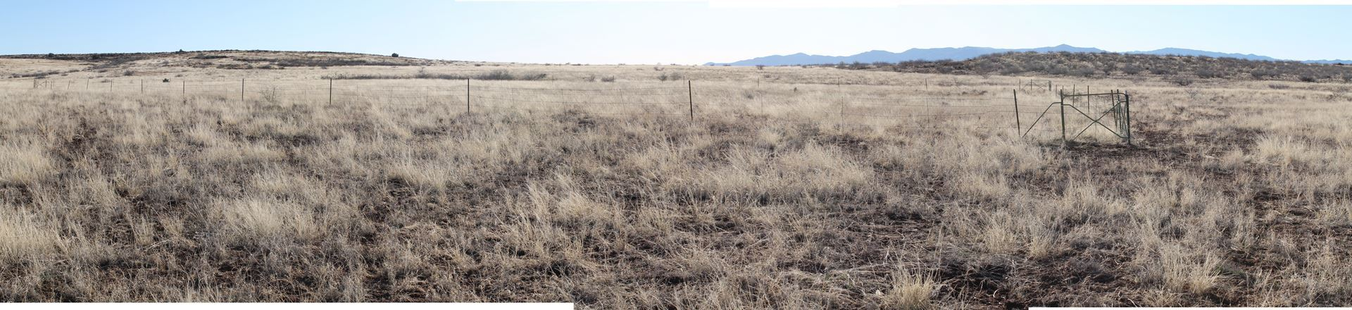 Wintertime grassland and monitored exclosure plot, AFNM, March 2013.